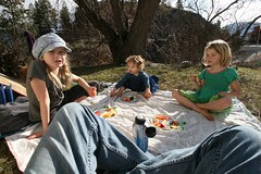 february-picnic-lunch