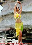 Ileana in devadasu movie