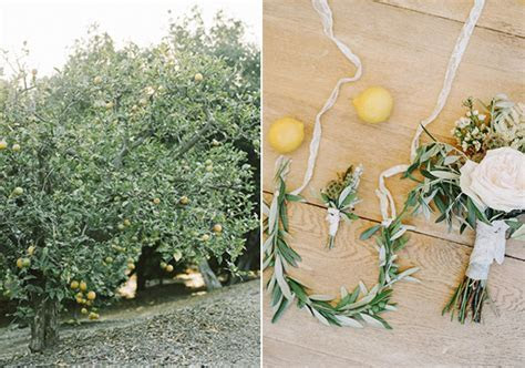 Intimate lemon grove wedding   Santa Barbara Wedding   100