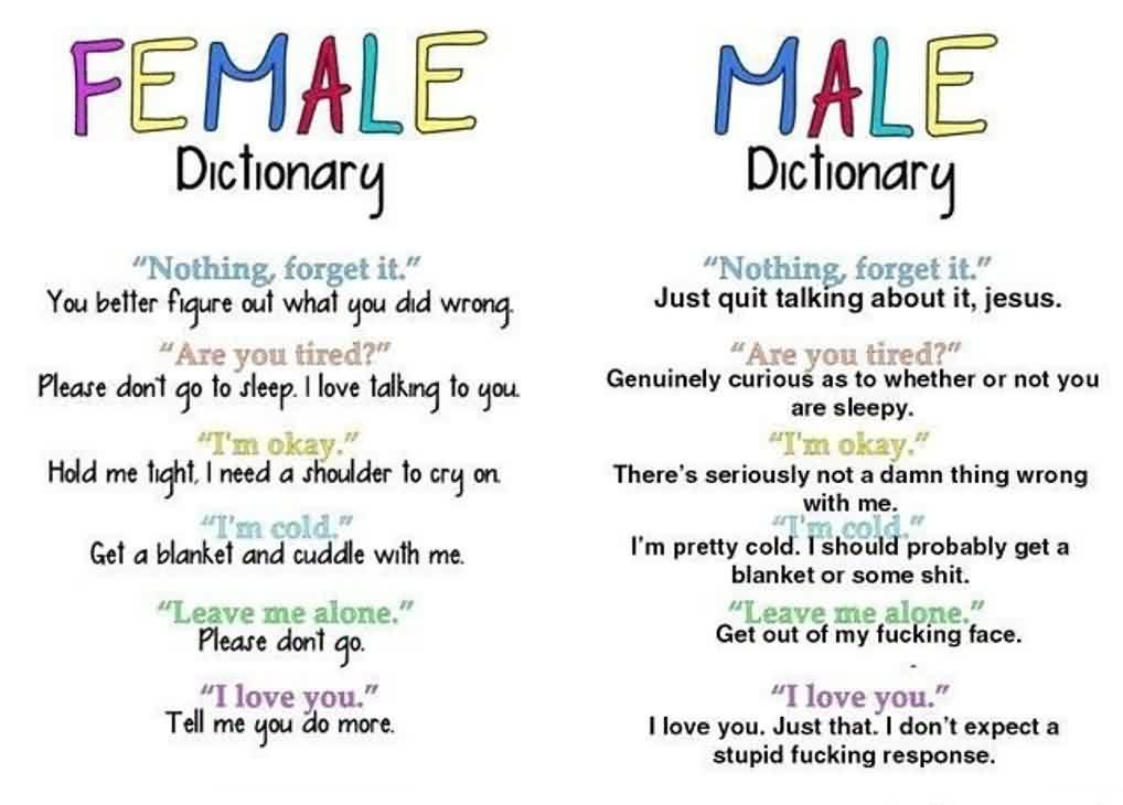 Funny Quotes About Husband Or Wife Male Female Dictionary