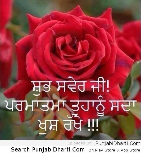 Good Morning Images In Punjabi Hd Amatwallpaperorg