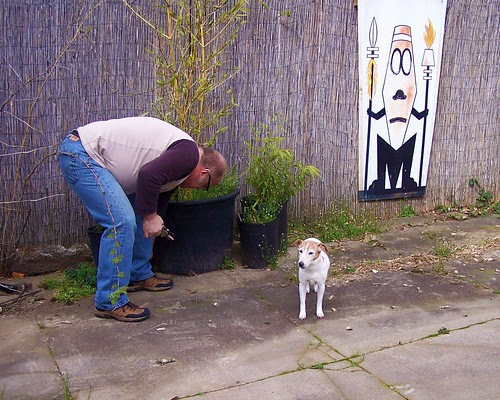 Juju supervising daddy with weeding