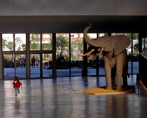 El Elefante....