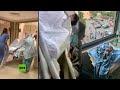Esta mujer da a luz cuando su hospital es sacudido por la explosión en Beirut