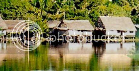 Amazonía 2
