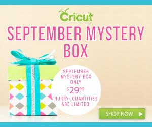 Cricut September Mystery Box