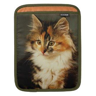 iPad Case-Calico Cat iPad Sleeves