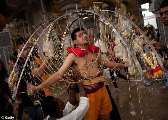 A devotee has his body pierced with hooks before taking part in the Thaipusam procession at Sri Srinivasa Perumal Temple