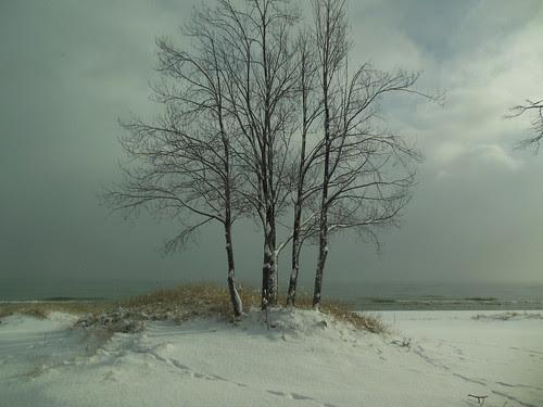 Lake Huron with snow.