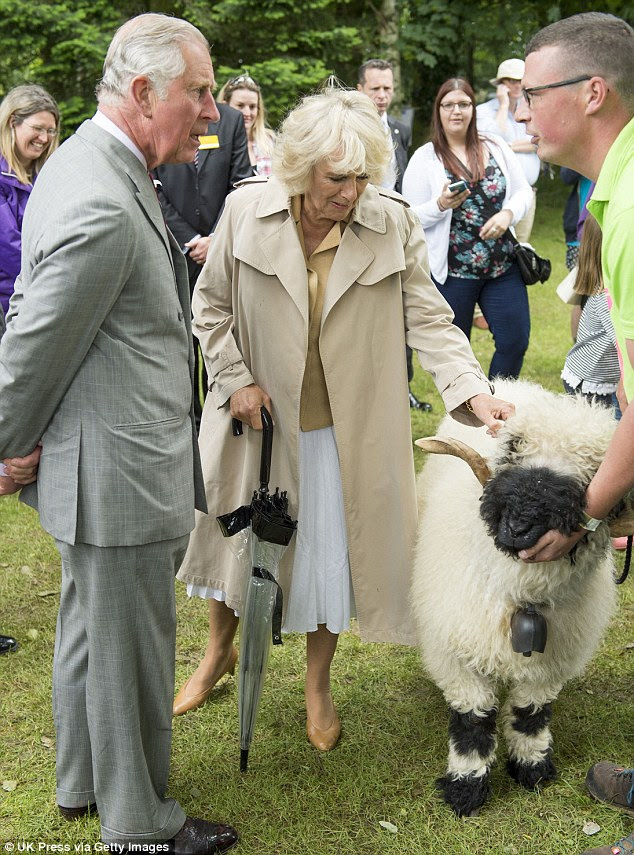 Książę Karol i Camilla na Royal Norfolk Show + więcej.