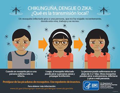 Chikunguña, dengue o zika: ¿Qué es la transmisión a nivel local? Una persona que no ha viajado recientemente es picada por un mosquito infectado en el lugar donde vive, trabaja o practica un deporte.