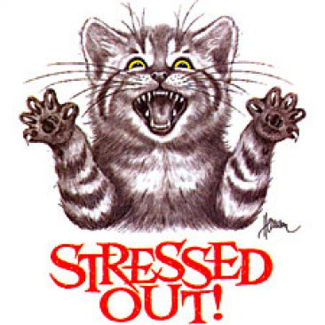 Funny Stressed Out Pictures - Cliparts.co