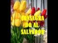 EL SECRETO DE LAS FLORES | MAURY Y CHELY