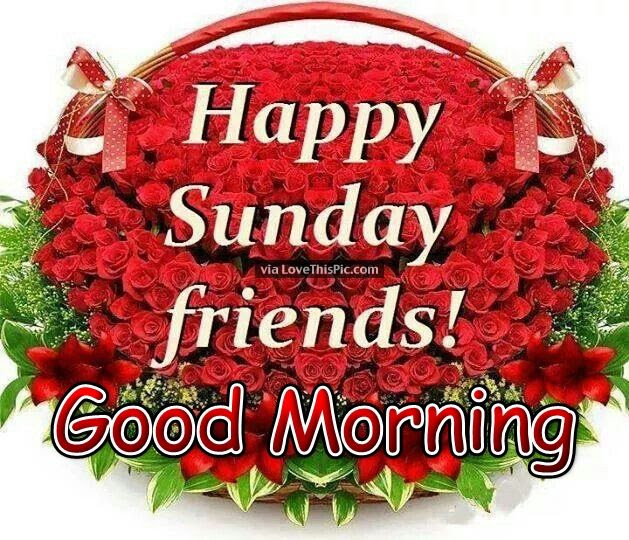 Good Morning Happy Sunday Friends Pictures Photos And Images For