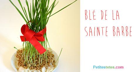 Αποτέλεσμα εικόνας για Le blé de la Sainte-Barbe