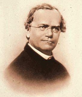 FULL WALLPAPER: Gregor Mendel