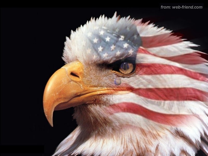 eagle and american flag tattoos. american flag eagle pictures.