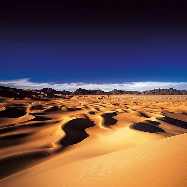 File:Michael martin wüste (49).jpg