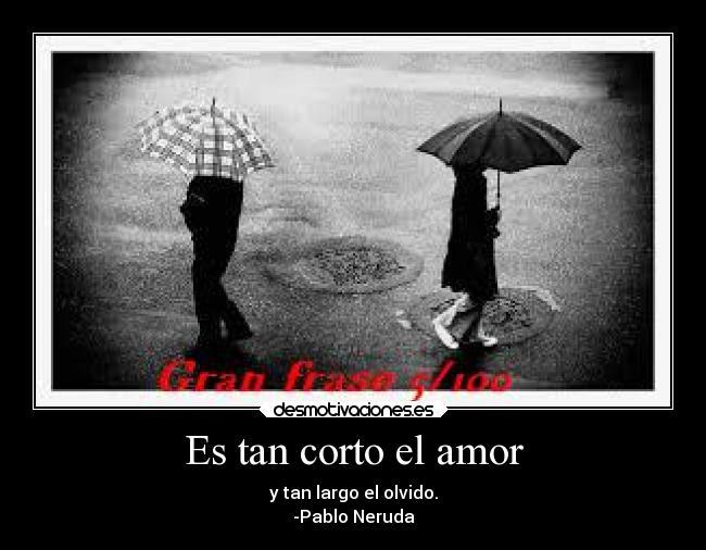 Es Tan Corto El Amor Desmotivaciones