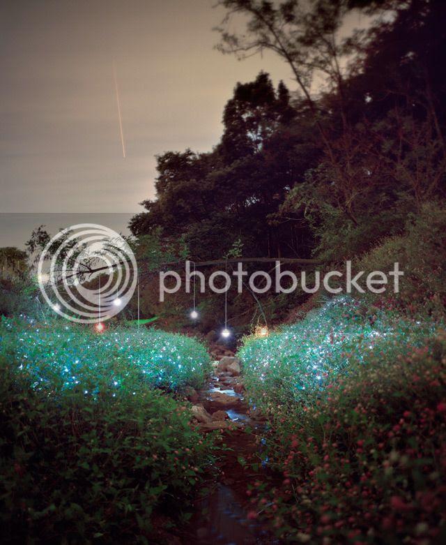 photo LightInstallationsbyLeeEunyeol-6_zps0be9d196.jpg