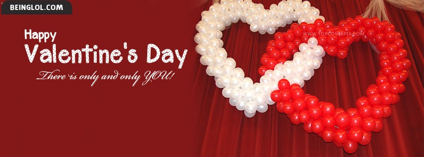 Cute Teddy Bears Of Valentine Day Facebook Cover Timeline Banner