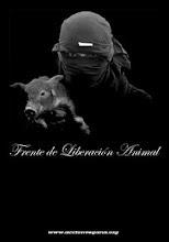 ES URGENTE TRABAJAR EN PARALELO LA LIBERACIÓN ANIMAL Y LA LIBERACIÓN HUMANA