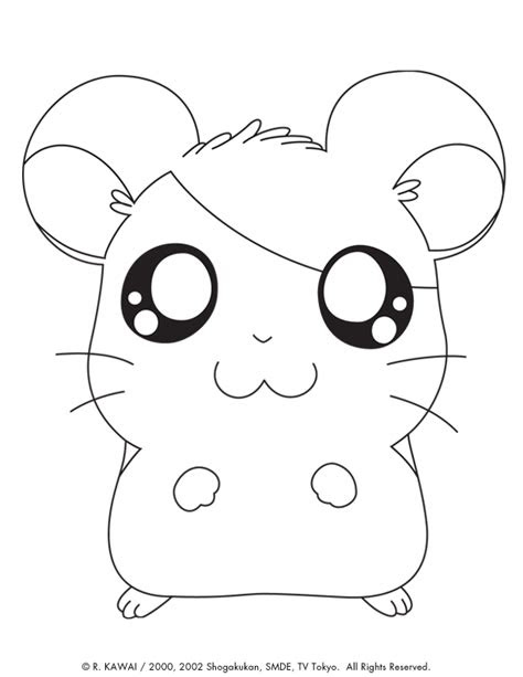 cute baby animal coloring pages  image coloringsnet
