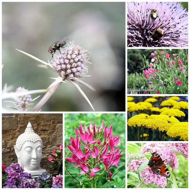 PicMonkey Collage waterperry 1