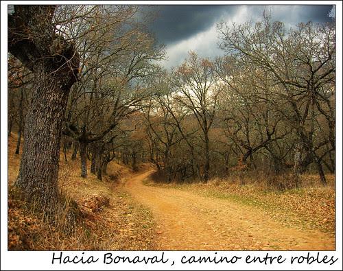 camino hacia Bonaval
