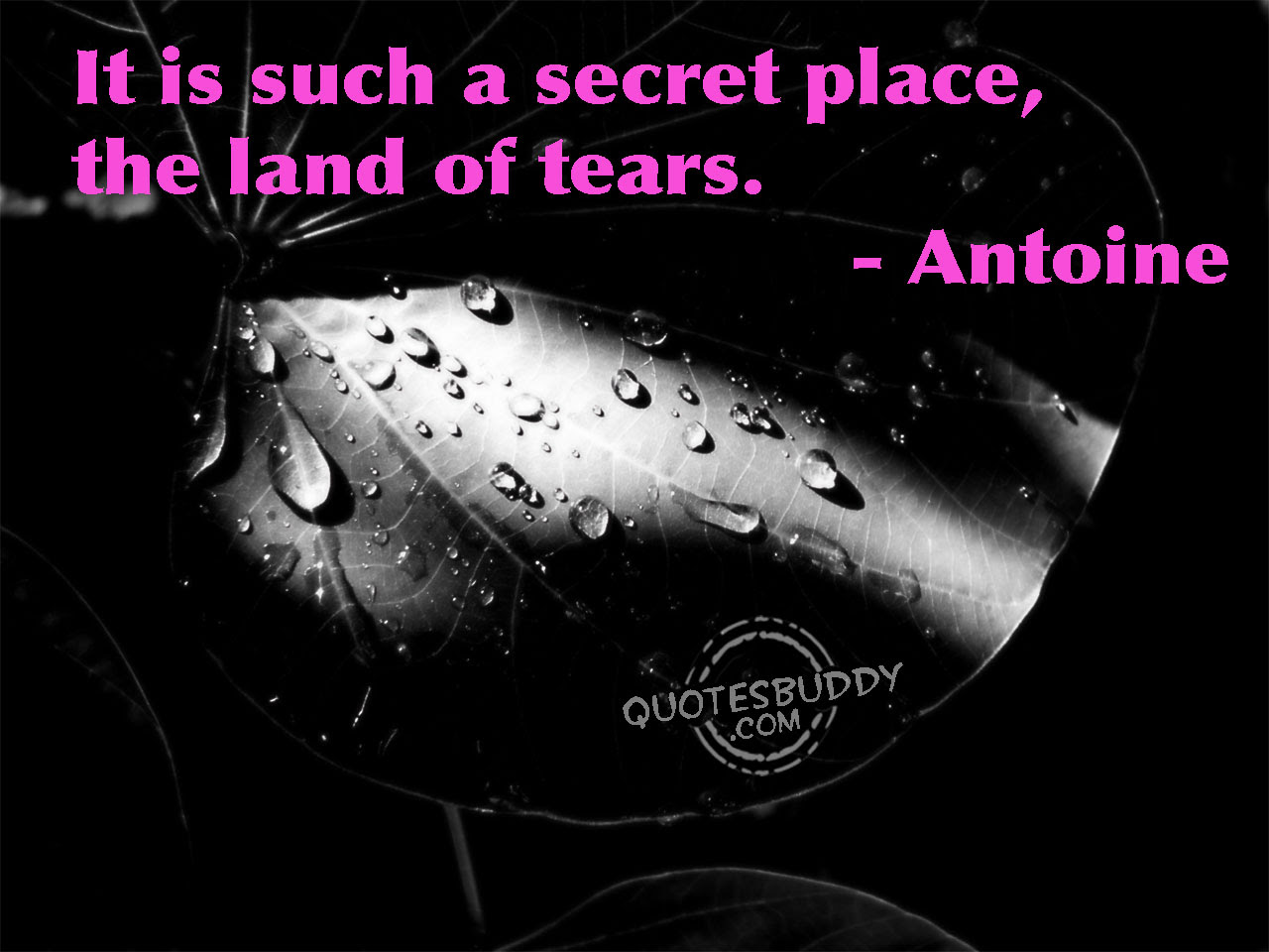 "It Is Such A Secret Place The Land Tears "" Antoine"