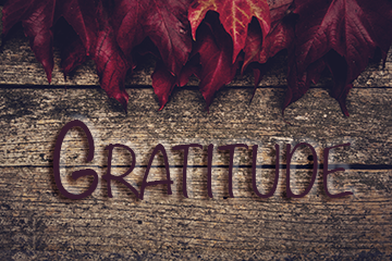 Thanksgiving_11-25