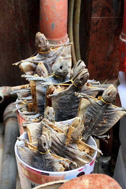 Dried Food Market