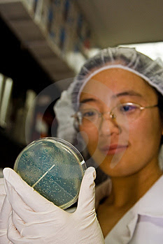 Asian scientist with bacteria
