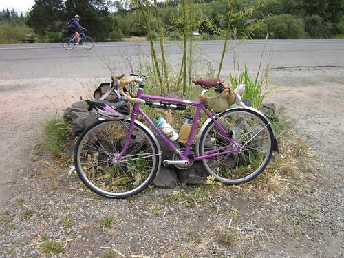 Isn't that a pretty bicycle?