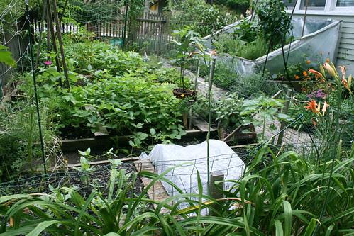 side garden 009