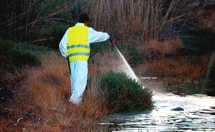 Άρτα: Ψεκασμοί για καταπολέμηση κουνουπιών, τρωκτικών και επιβλαβών εντόμων