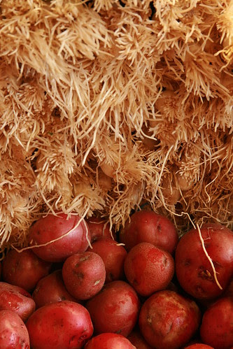 onions & potatoes