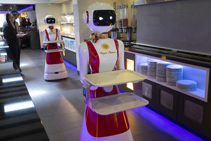 TREND ESSENCE: Dutch restaurant tests robot waiters amid pandemic: 'Hello and welcome'