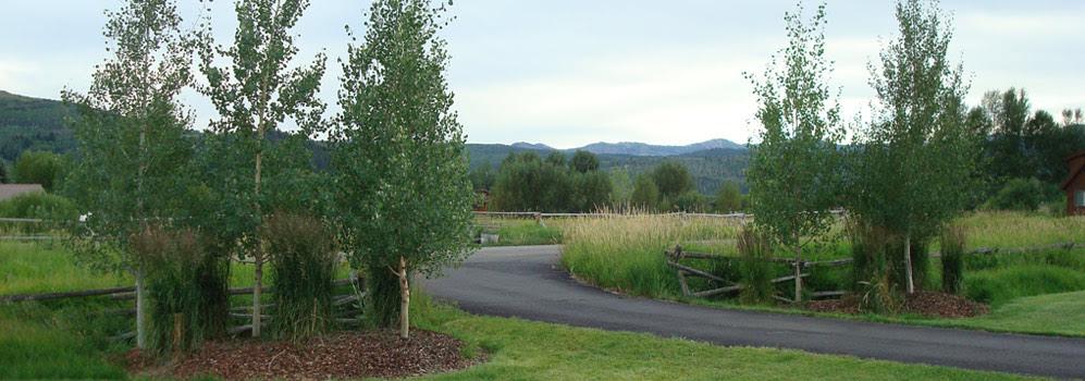 50 New Front Yard Landscaping Design Ideas Garden Yay Pinterest