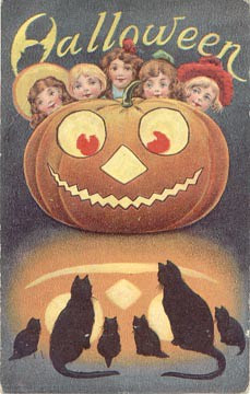 Halloween Pumpkin Black Cats (by senses working overtime)