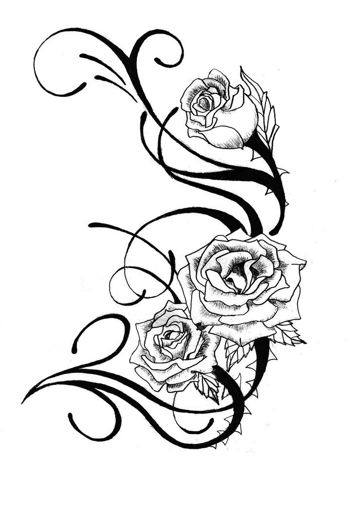 Heart And Rose Drawings In Pencil Free Download Best Heart And