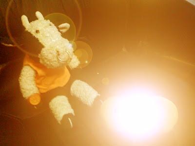Orange Lantern Bully