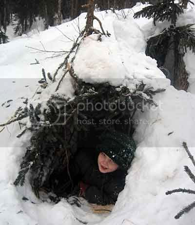 Zeke's snow cave with spruce branches.
