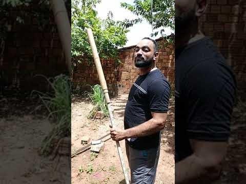 Ailton Pontes comemora com foguete saída de Rogério das Lobas do grupo do prefeito de Poção de Pedras
