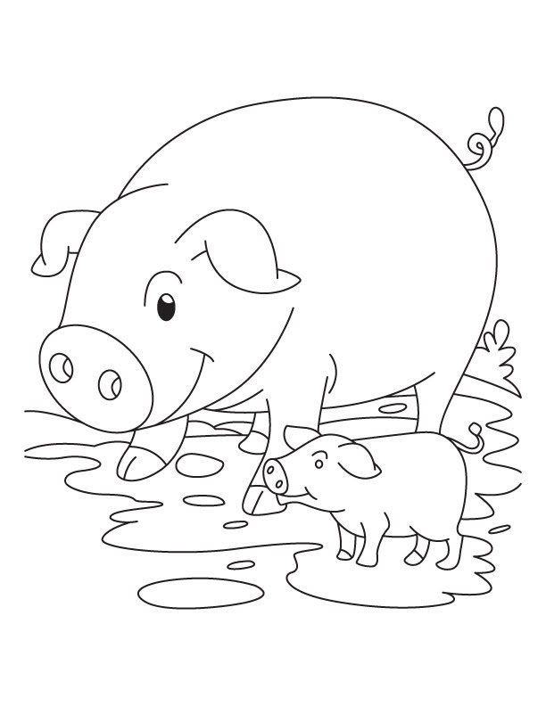 Baby Piglet Coloring Pages Coloring And Drawing