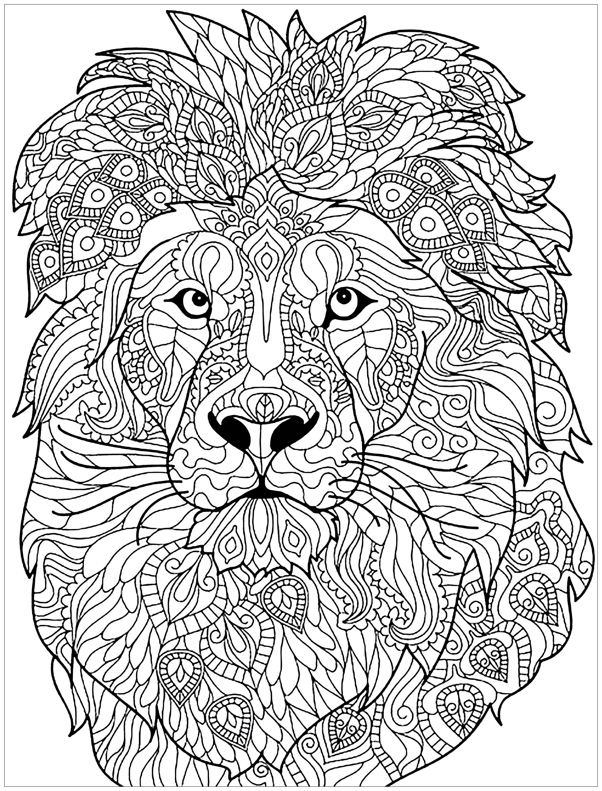 Adult Coloring Pages Lion at GetDrawings | Free download