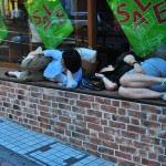 japanese_sleeping_105