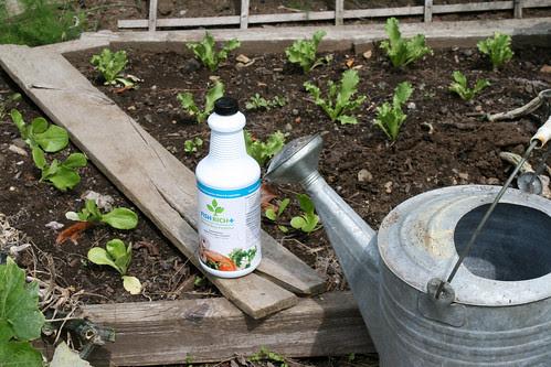 fertilizer 008