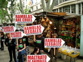 Barcelona prohíbe definitivamente la venta de pájaros en La Rambla