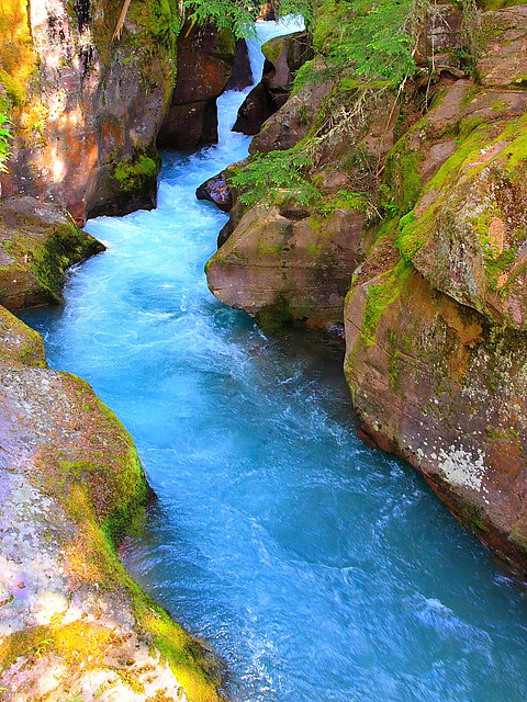 IMG_2400 Avalanche Creek